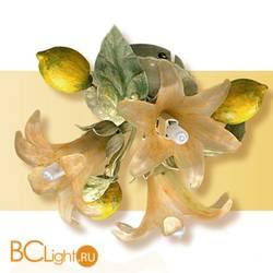 Потолочный светильник Passeri International Frutta F 6195/3 Dec. 04