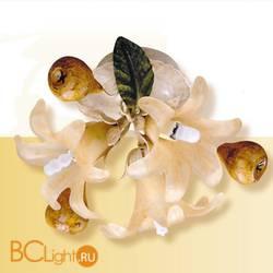 Потолочный светильник Passeri International Frutta F 6205/3 Dec. 05