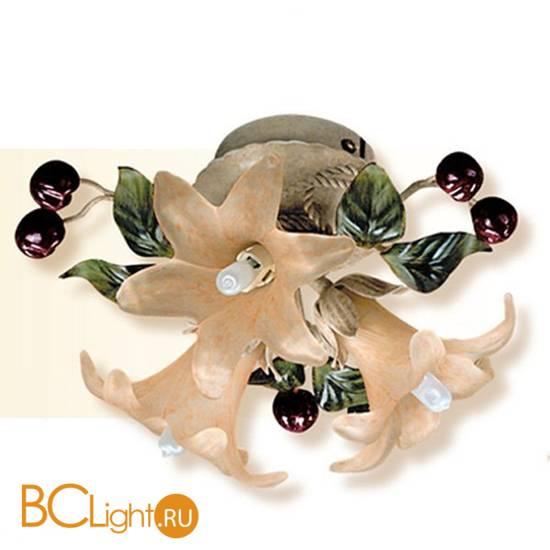 Потолочный светильник Passeri International Frutta F 6200/3 Dec. 060