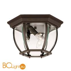 Уличный потолочный светильник Savoy House Exterior Collections 07038-BZ