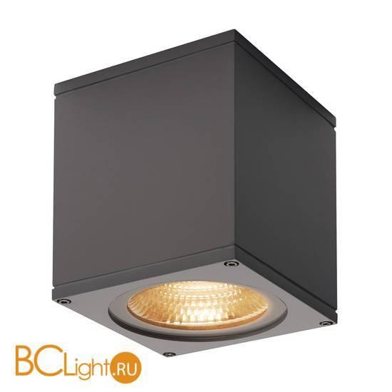 Уличный потолочный светильник SLV Theo 234535