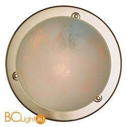 Потолочный светильник Sonex Alabastro 121