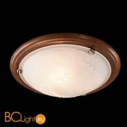 Потолочный светильник Sonex Lufe 336