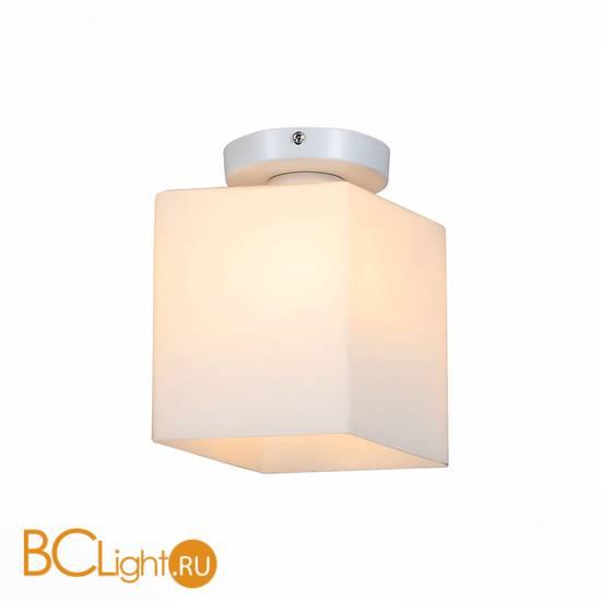 Потолочный светильник ST Luce Aspetto SL548.501.01