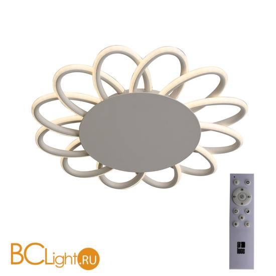 Потолочный светильник ST Luce Camomilla SL828.502.12