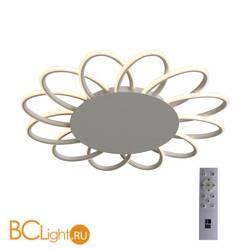 Потолочный светильник ST Luce Camomilla SL828.512.12