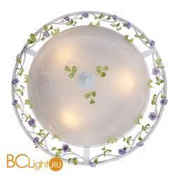 Настенно-потолочный светильник ST Luce Fiori SL695.502.03