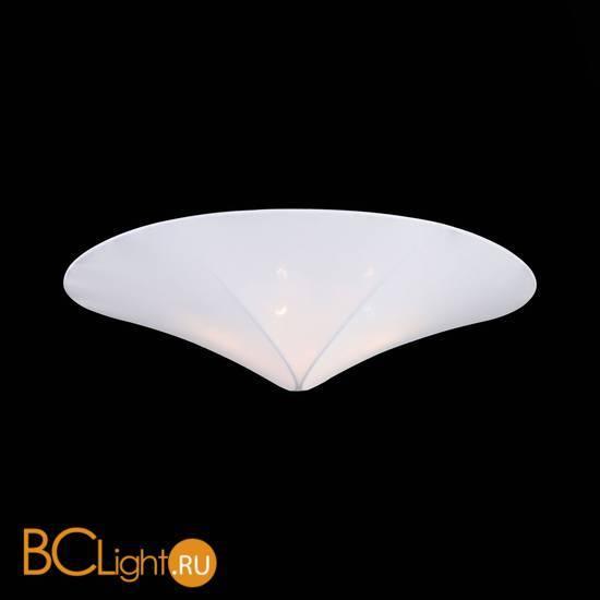 Потолочный светильник ST Luce Tonico SL360.552.04