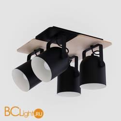 Потолочный светильник TK Lighting 2632 Spectro Black
