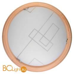 Потолочный светильник Toplight Debora TL9540Y-00PN