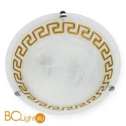 Настенно-потолочный светильник Toplight Gien TL9172Y-03BN