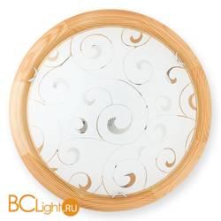 Настенно-потолочный светильник Toplight Kelly TL9043Y-02PN
